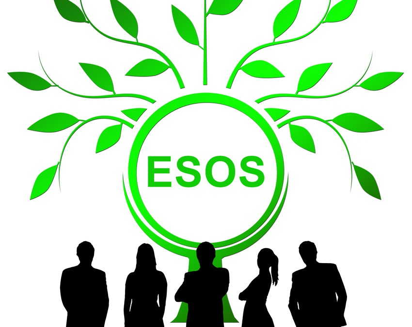 Businesses Fail to Comply With ESOS