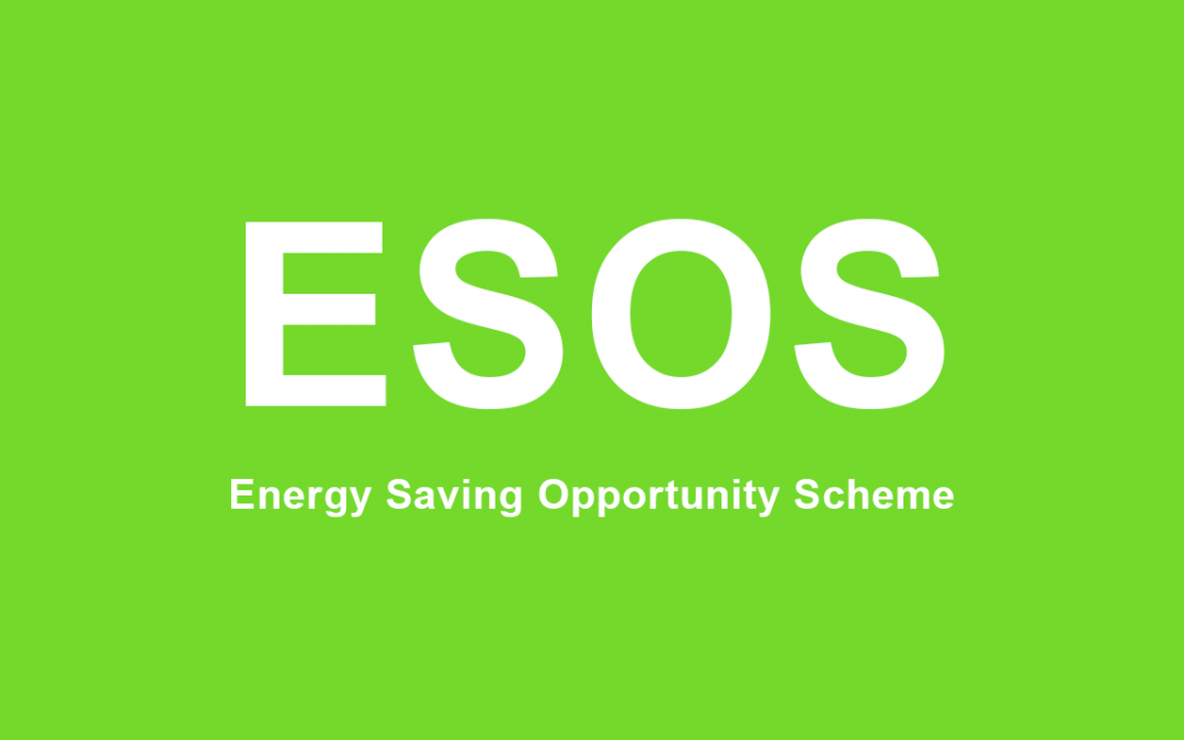 Does your business qualify for ESOS?
