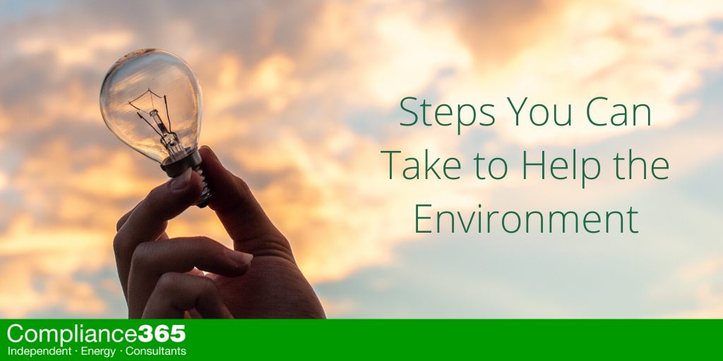 Steps You Can Take to Help the Environment