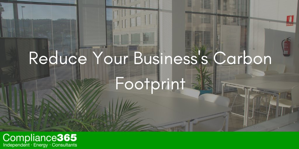 Reduce Your Business's Carbon Footprint